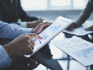 Business Litigation & Formation